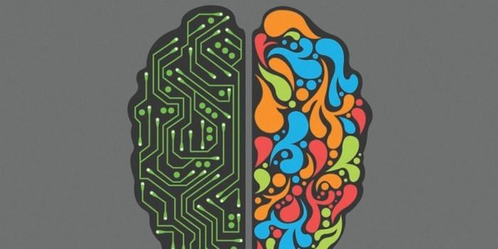 MEMO研习社 你知道人脑能存多少数据吗?
