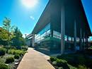 在微软谷歌苹果总部工作是怎样一种体验