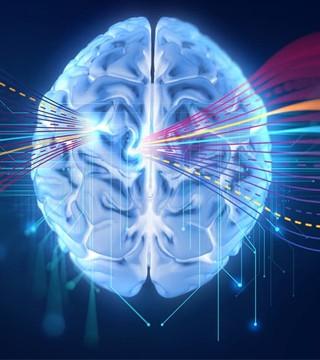 Graphcore学术计划加速AI创新