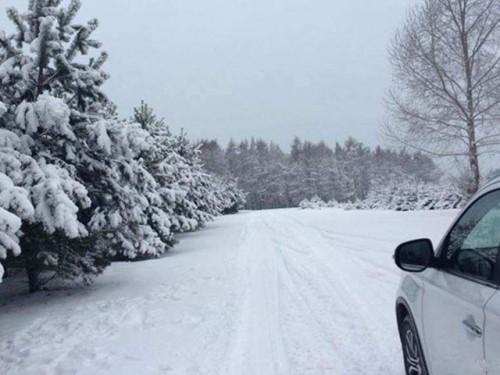 穿雪原跨冰湖 选购这些汽车用品不犯愁