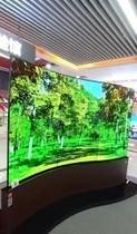 广州塔OLED新视界