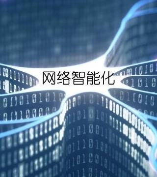 小心步入网络智能化误区