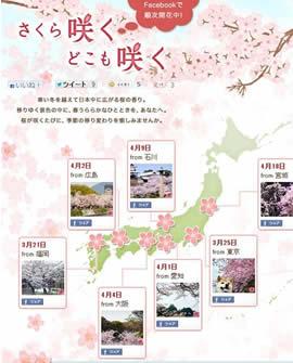 随花盛放的日本夏季新机