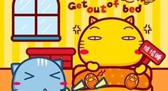 哈咪猫好基友