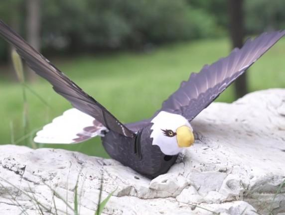 汉王科技全新Go Go Bird系列重磅来袭