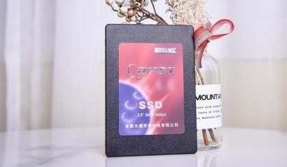 国产SSD靠不住?大唐DT300想和这个世界谈谈